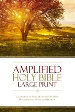 Amplified Holy Bible, Large Print, Hardcover by Zondervan (author)