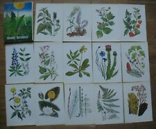 Lot 32 Russian Post Card Set Pc For Young Botanist Plant grass flower berry Old