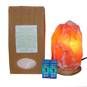 Salt Crystal Lamp Himalayan 100% Natural Cable 2x 15W Bulb Free 1kg Edible Salt