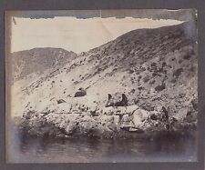 OLD EARLY 1900'S OLD AVALON CATALINA ISLAND CALIFORNIA SEA LIONS SUNNING PHOTO