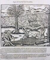 Chasse au Crocodile 1614 Aloës Poissons monstrueux rare gravure sur bois Paré