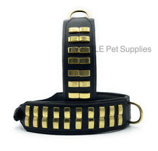 LEATHER DOG COLLAR STUDDED BIG DOGS BULLY COLLAR 2'' WIDE PADDED AND STRONG