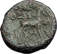 THESSALONICA Macedonia 148BC Authentic Ancient Greek Coin DIONYSUS & GOAT i62631
