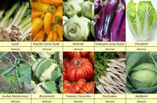 10 Gemüse Samen Set 2, Lauch, Aubergine, Pastinake, Kohl, Paprika, Tomate, ....