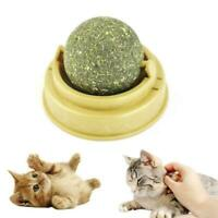 Nature Cat Mint Ball Play Toy Coated WithToy For Pet Catnip Ball Soft Rotat W3Y8