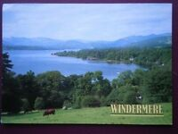 POSTCARD CUMBRIA WINDERMERE - LOVELY VIEW OVER THE LAKE