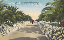 OLD Postcard A184 Flower Bordered Entrance Mission Cliff Gardens San Diego CAL