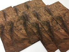 """Exotic Wood Walnut Burl Veneer Sequenced Matched 7 pc Pack (5.5"""" W x 12"""" L)"""