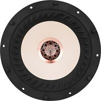 "Tang Band W8-2314 8"" Coaxial Full-Range Woofer"