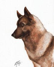 Original Oil Art ELKHOUND Portrait Painting DOG PUPPY Artist Signed Artwork