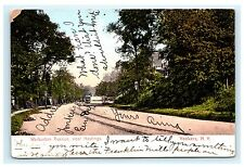 Warburton Avenue Near Hastings Yonkers New York NY UDB Postcard 1907 Westchester