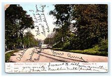 Warburton Avenue Near Hastings Yonkers New York NY UDB Postcard 1907 Westchester