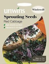 Unwins Pictorial Packet - Sprouting Seeds Red Cabbage - 3000 Seeds