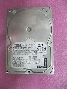 40GB 5400RPM ATA EIDE HD IBM 33P3416 IBM