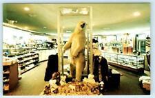 ANCHORAGE INTERNATIONAL AIRPORT  Taxidermy Polar Bear GIFT SHOP 1960s  Postcard