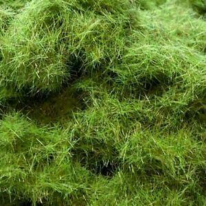 6mm Medium Green Grass Static Grass - 30g