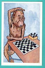 MONKEY plays chess VINTAGE POSTCARD 916