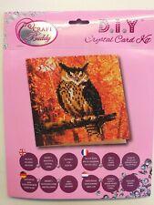Brand New - Craft Buddy Crystal Card Kit. Owl.