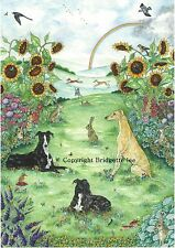Whippet greyhound Dog Garden Watercolor/ink  painting  By Bridgette Lee