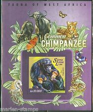 SIERRA LEONE 2015 FAUNA OF WEST AFRICA COMMON CHIMPANZEE SOUVENIR SHEET MINT NH