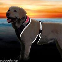 NEW Reflective Flash Soft Dog Harness Black