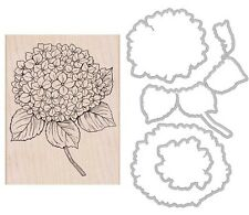 "Hero Arts ""LARGE HYDRANGEA"" Rubber Wood Stamp + Coordinating Frame Cuts Dies"