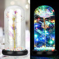 Romantic Rose Flower Glass LED Night Light Festival Xmas Decoration Light Gift