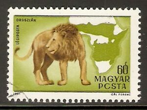 HUNGARY 1981 - Kittenberger 60f Lion stamp. Error. Used.