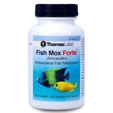Fish Mox Forte 500mg 100 Capsules FishMox capsule into aquarium gallons water