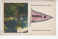 Scenic Pink and Blue Printed Pennant from Nahunta Ga 19452