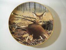 Collectors Plate Danbury Mint ''Pride Of The Wilderness'' 'Fresh Start'' Deer