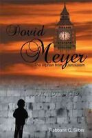 Dovid Meyer : The Orphan from Jerusalem, Paperback by Silber, Rabbanit G., Br...
