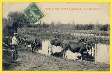 cpa 44 - Route du POULIGUEN à La BAULE Le GRAND CLOS Vacher Troupeau de VACHES