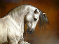 ZOPT09 Huge hand painted Oil painting animal running white horse art on canvas