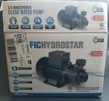"""3/4 HP Clear Water Pump NOT-Submersible Pacific Hydrostar Capped 1"""" inch"""