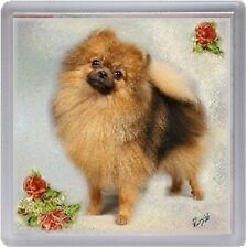 Pomeranian Coaster No 2 by Starprint