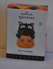 HALLMARK ORNAMENT HALLOWEEN CAT O' LANTERN  DATED  2013