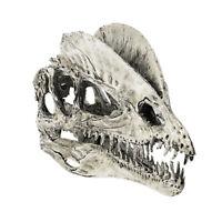 Dinosaur Dilophosaurus Skull Replica Skeleton Model Aquarium Ornament White