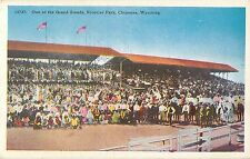 c1930s Frontier Park Grand Stands, Cheyenne, Wyoming Postcard