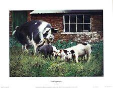 """Paul aplicaciones """"cuando dad?s sobre"""" corral Cerdo Arte Tamaño:43 Cm X 34 Cm Raro"""