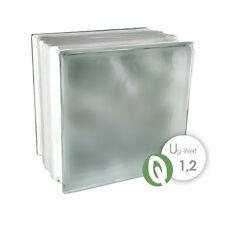 1 Paket = 6 Stück Glasbausteine Glasstein WOLKE REFLEX RUBIN 19x19x8cm
