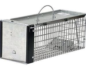 Havahart 0745 One-Door Animal Trap for Chipmunk, Squirrel, Rat, and Weasel,