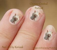 Chinese Crested Portrait,   24 Unique Designer Dog Nail Art Stickers Decals