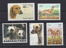 Dog Art Photo Head Body Portrait Postage Stamp Saluki Sloughi Collection 5 x Mnh