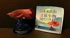 Kaiyodo Japan Shinigawa Aquarium Exclusive Red Arowana Dragon Fish Figure SP