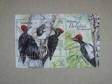 Malaysia   Vögel   Birds  2013     **
