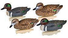 Flambeau Storm Front Classic Green Wing Teal Includes 4 Decoys,6-Pack 8015Suv