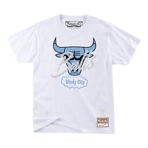 Men's Mitchell & Ness White NBA Chicago Bulls Blue North T-Shirt