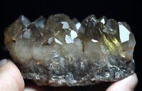 270g New Find NATURAL Clear Golden RUTILATED QUARTZ Crystal Cluster Specimen