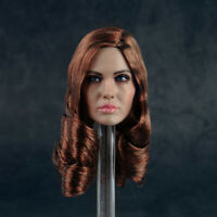 1/6 Female Angelina Jolie Head Sculpt Carving Model Brown Hair F 12'' PH Body